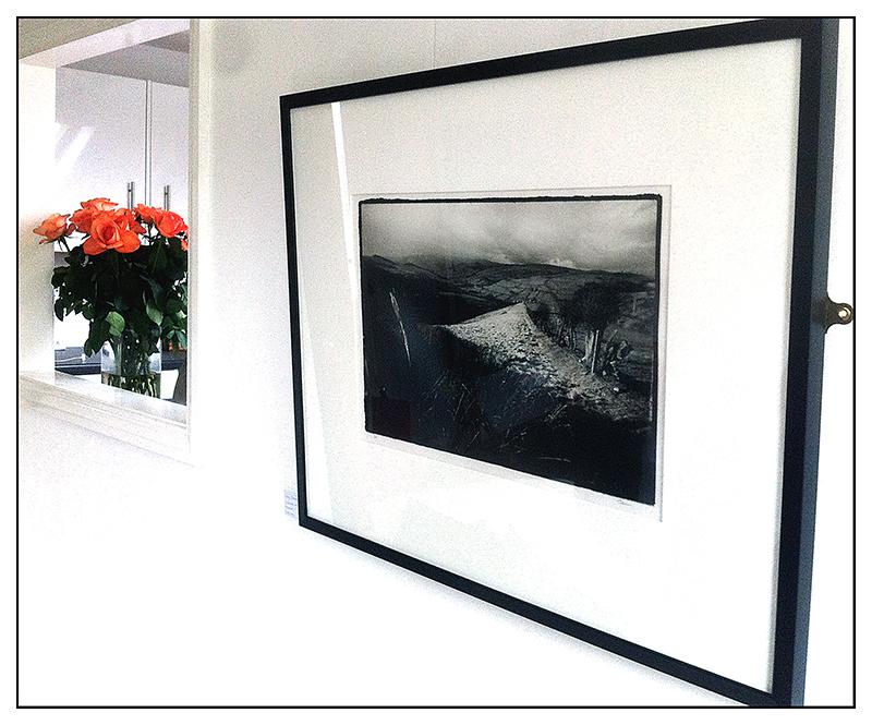 Exhibitions_Art_24c_01